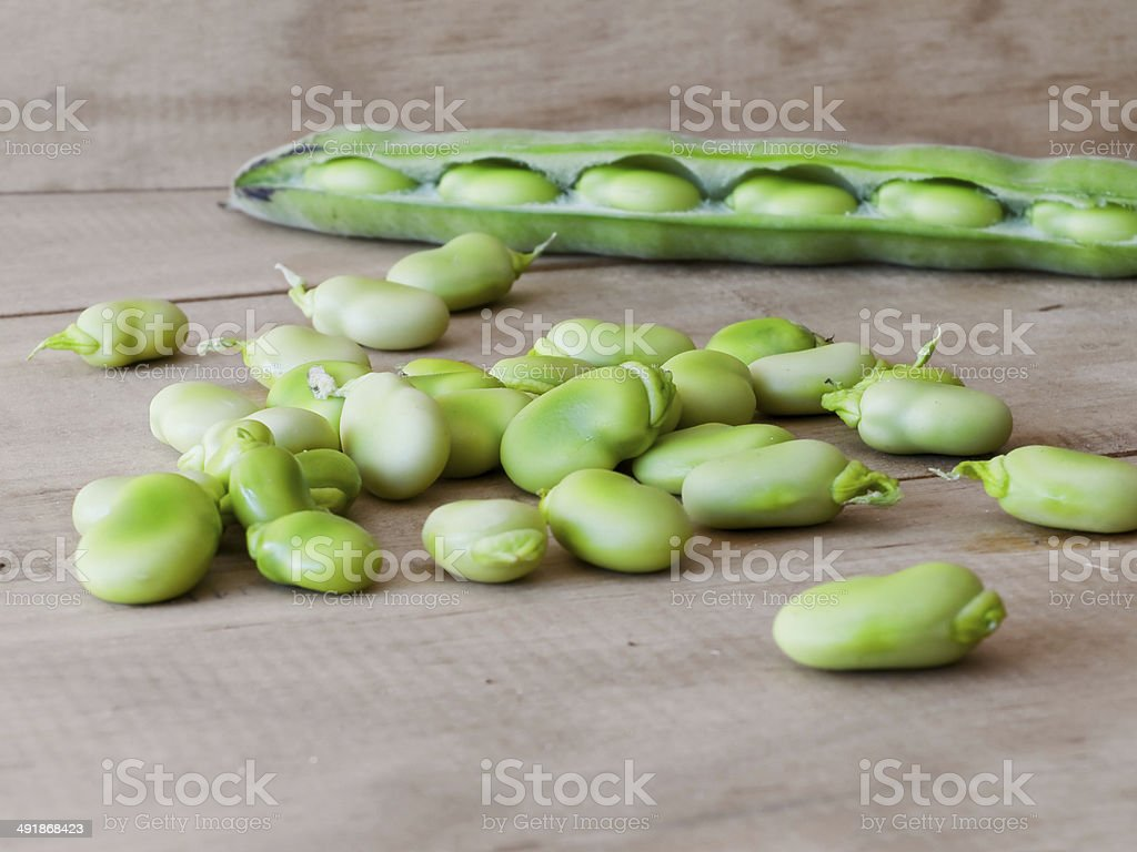 Ecological broad beans. stock photo