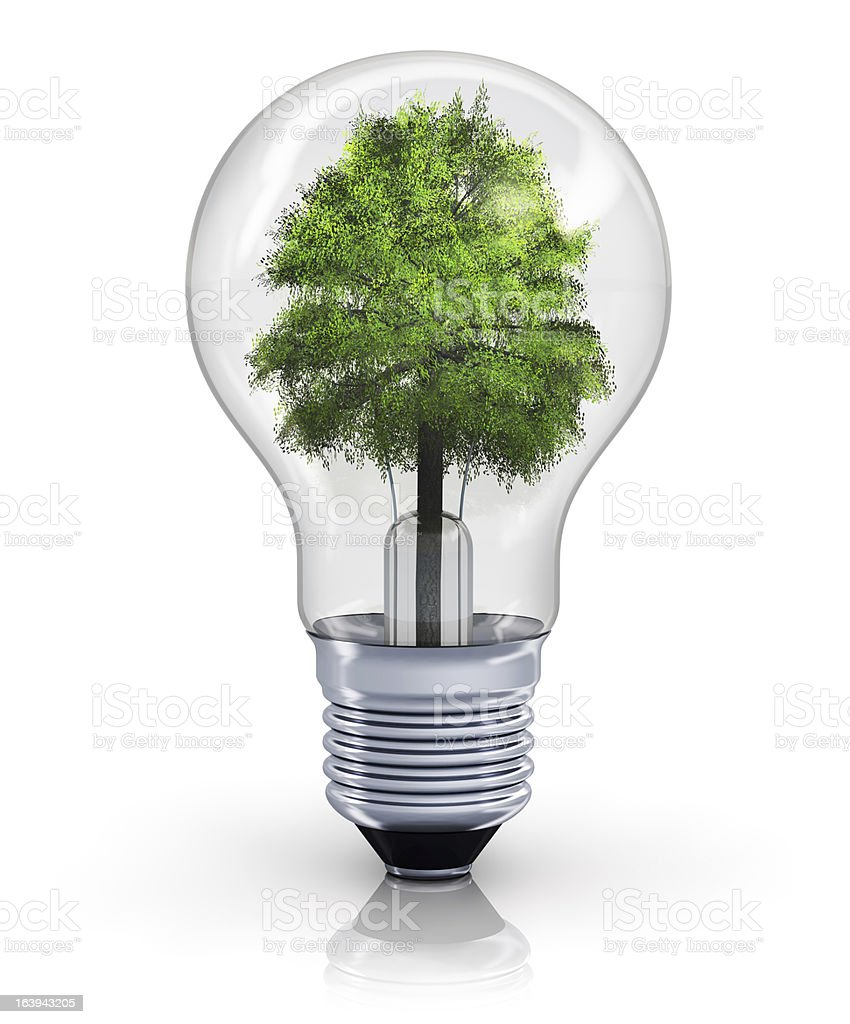Ecological concept royalty-free stock photo