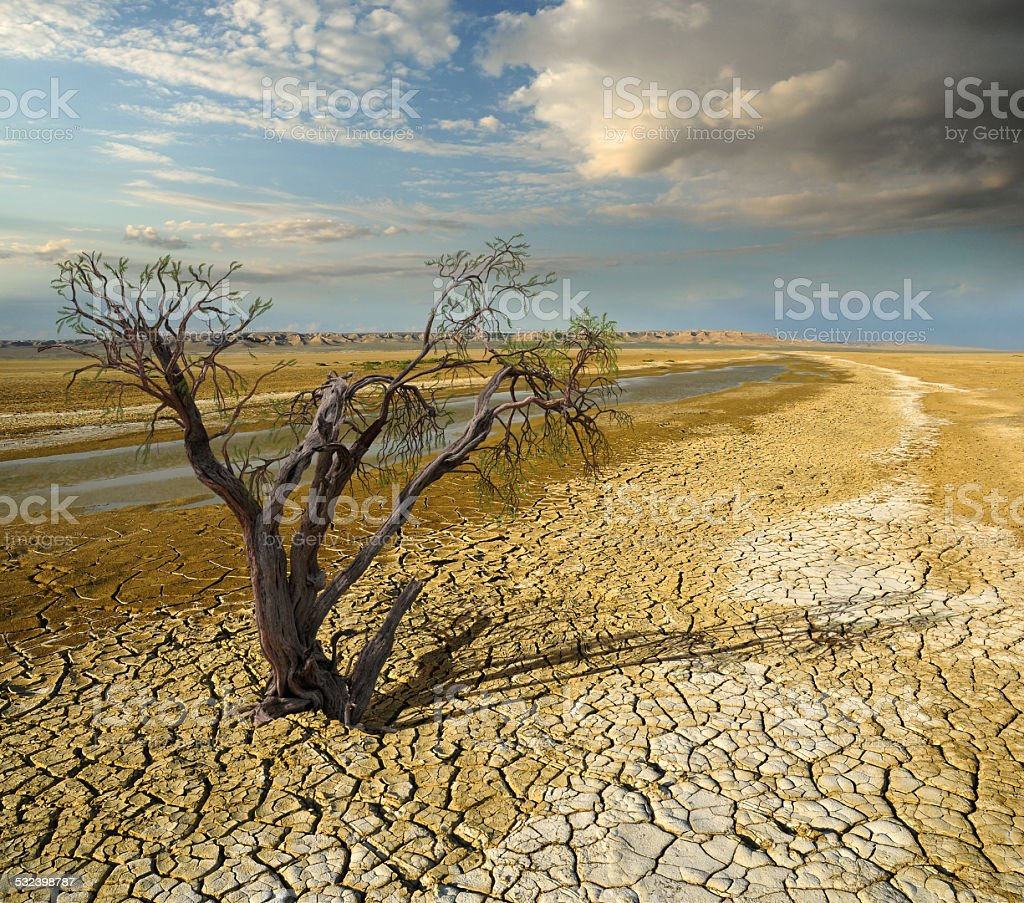 ecological problem stock photo