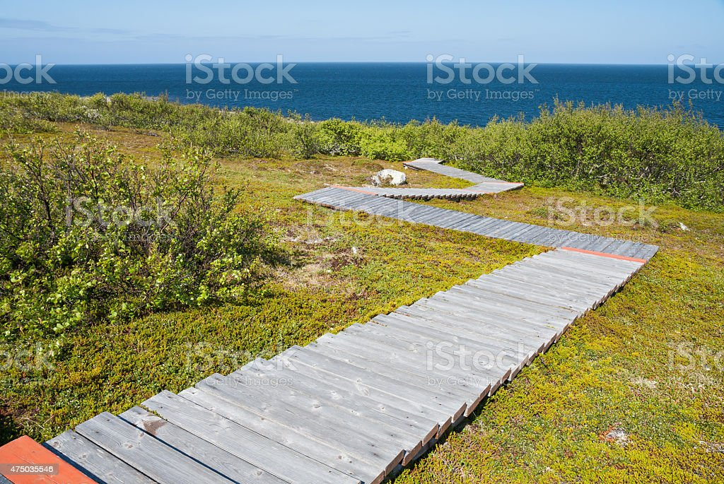 Ecological trail stock photo