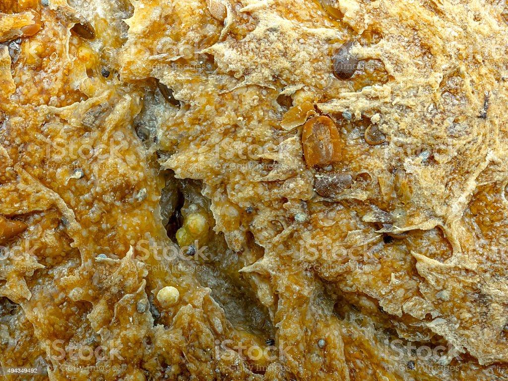 Ecológico textura e pão de centeio integral foto royalty-free