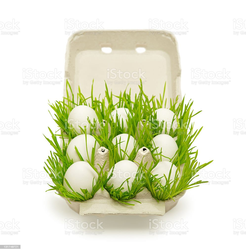 ecology concept health food royalty-free stock photo