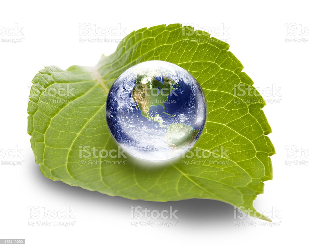 Ecology concept: world globe on green leaf stock photo