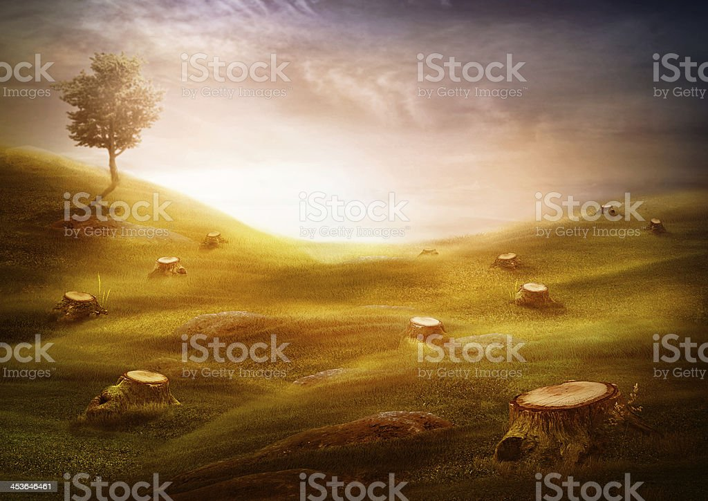 Ecology & environment design - Forest destruction royalty-free stock photo