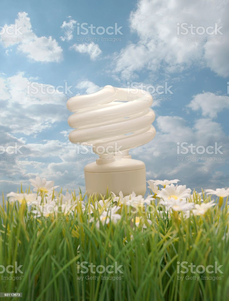 Ecology Friendly Compact Flourescent Light Bulb stock photo