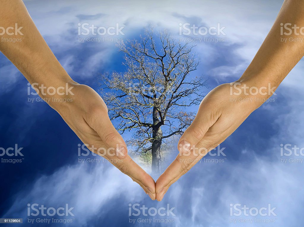 ecology, hands, responsibility, business royalty-free stock photo