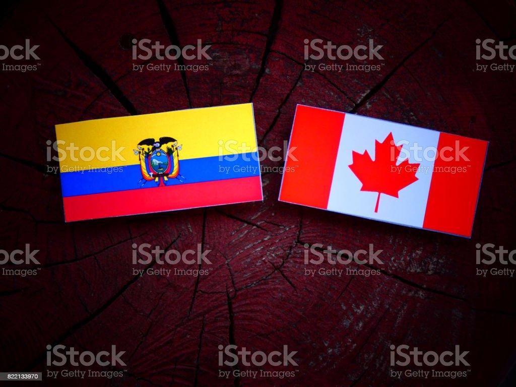 Ecuador flag with Canadian flag on a tree stump isolated stock photo
