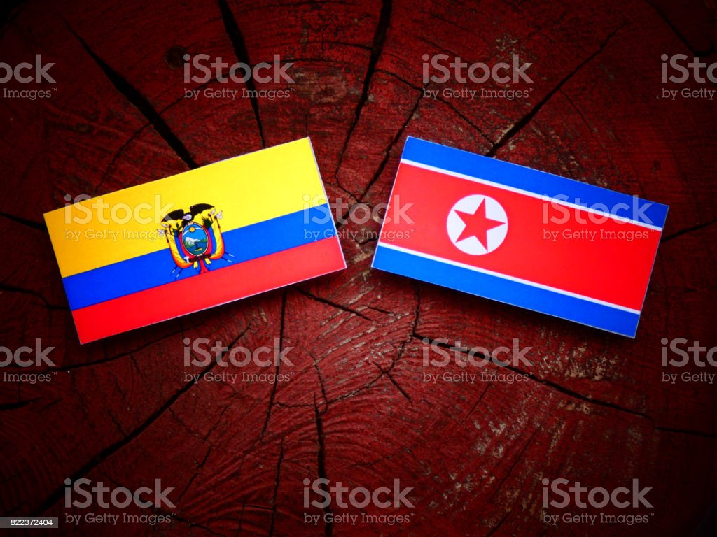 Ecuador flag with North Korean flag on a tree stump isolated stock photo