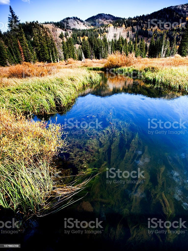 Edge of Silver Lake in Utah stock photo
