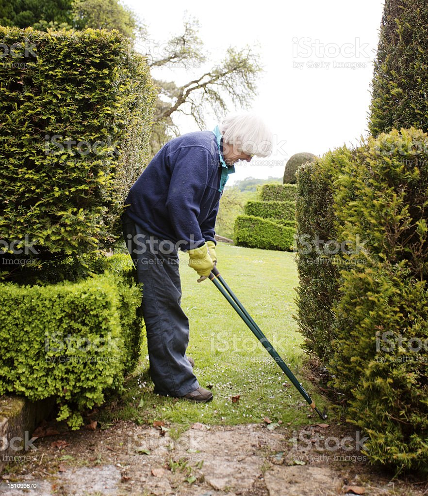 Edge trimming stock photo