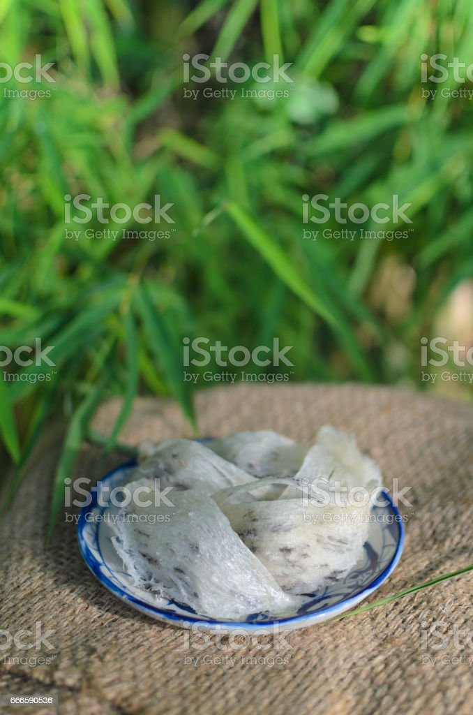 edible bird's nest on natural background stock photo