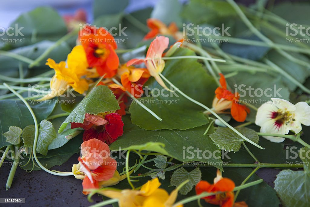 Edible Flowers used as garnish for gourmet meal presentation stock photo
