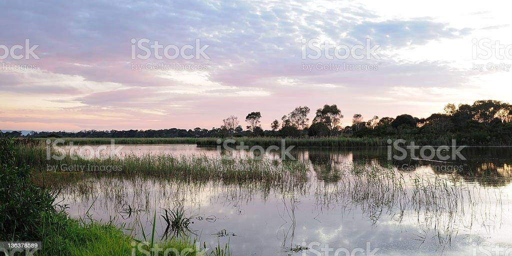 Edithvale-Seaford Wetlands stock photo