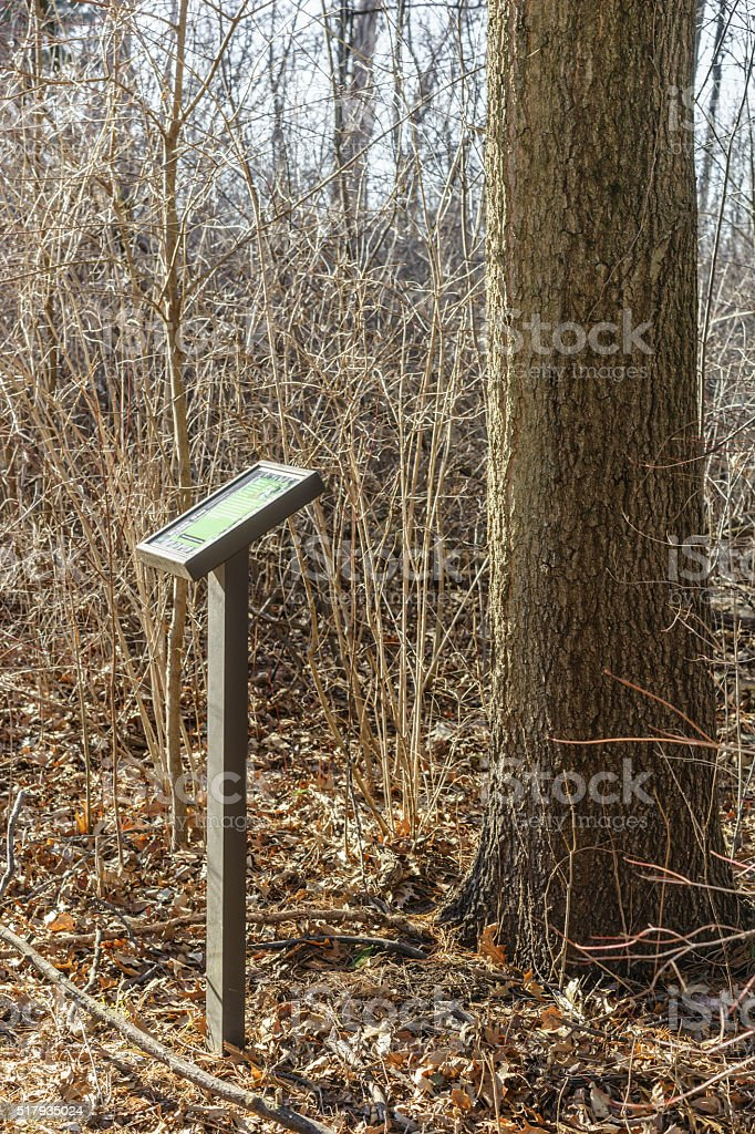 Educational signboard in woods stock photo