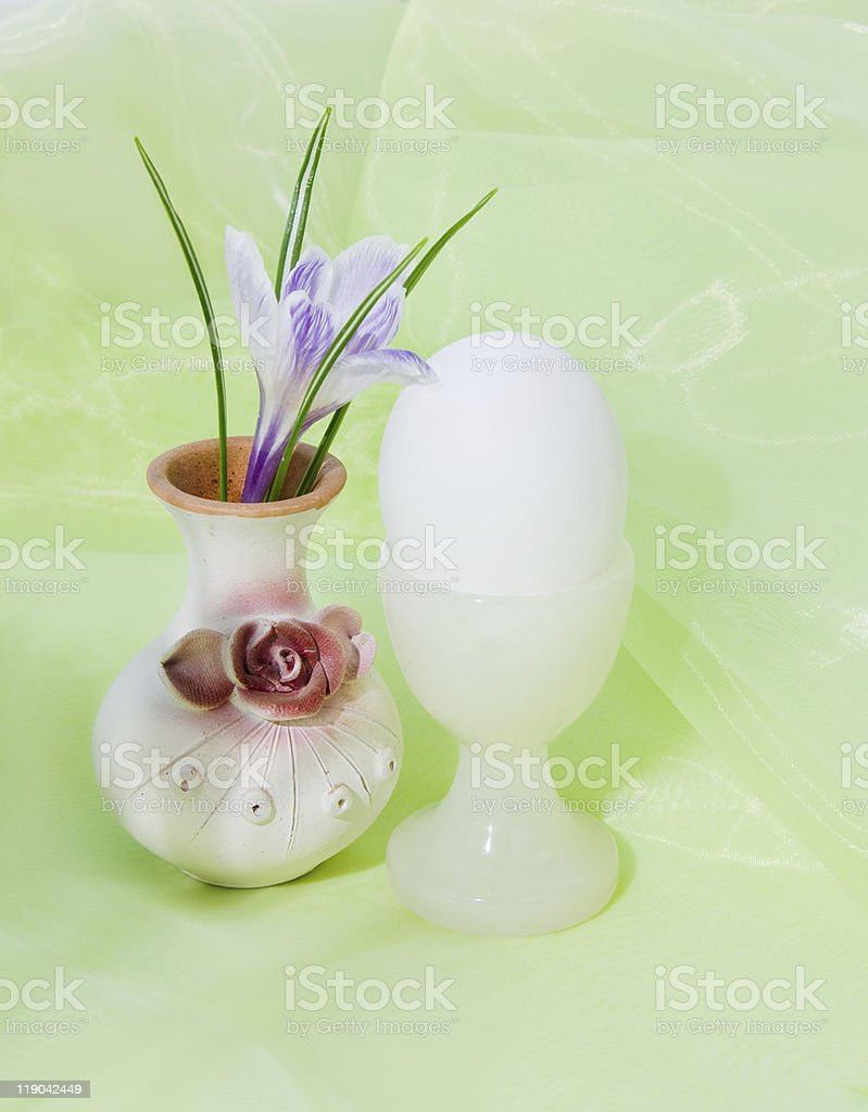 Egg and crocus royalty-free stock photo