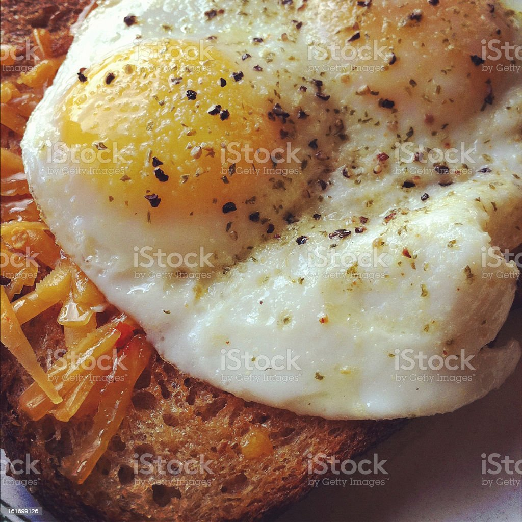 Egg and Toast stock photo