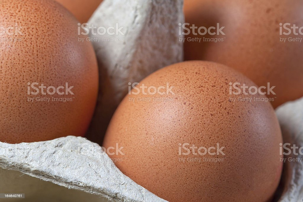 Egg carton with fresh brown eggs royalty-free stock photo