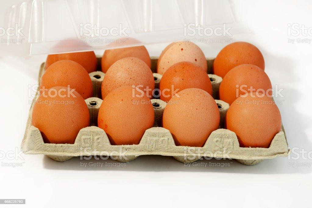 Egg, Chicken Egg stock photo