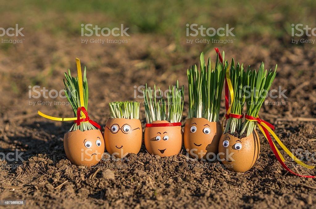Egg family stock photo