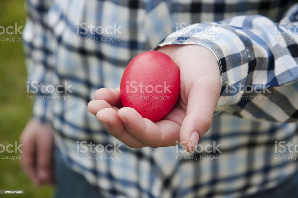 Egg hunt royalty-free stock photo