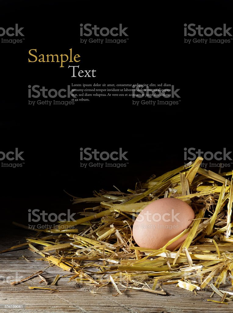 egg in a nest of straw on wood, dark background, stock photo