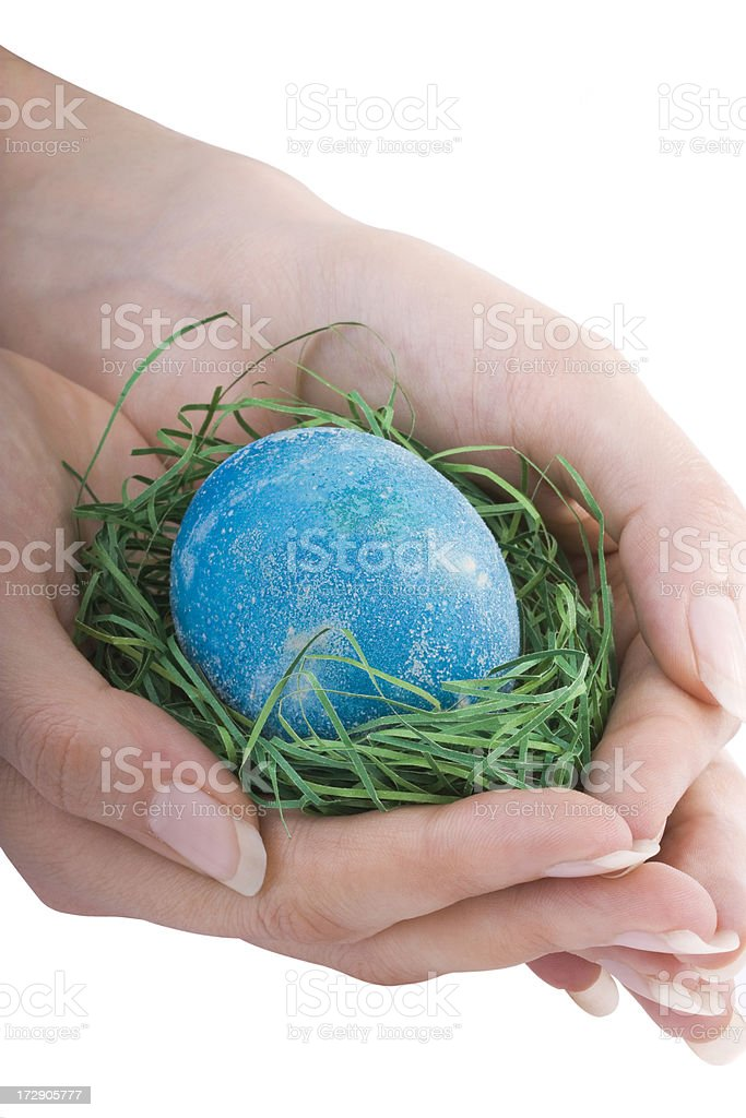 Egg in the Hands royalty-free stock photo