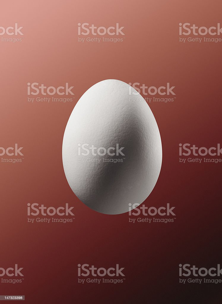 egg isolated with clipping path royalty-free stock photo