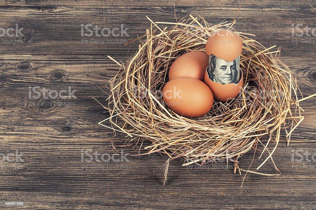Egg of money stock photo