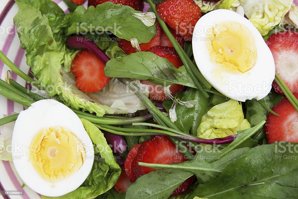 Egg salad stock photo