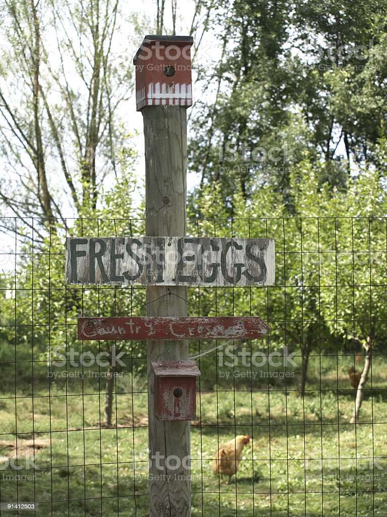 Egg Sign 1 royalty-free stock photo