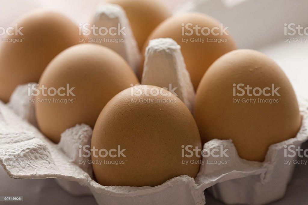 Egg tray royalty-free stock photo