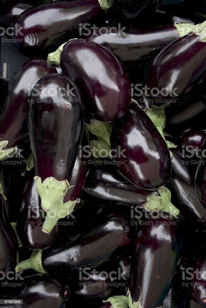 eggplant 2 stock photo
