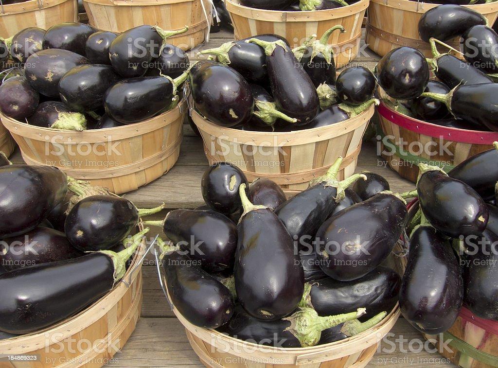 Eggplant Bushels stock photo
