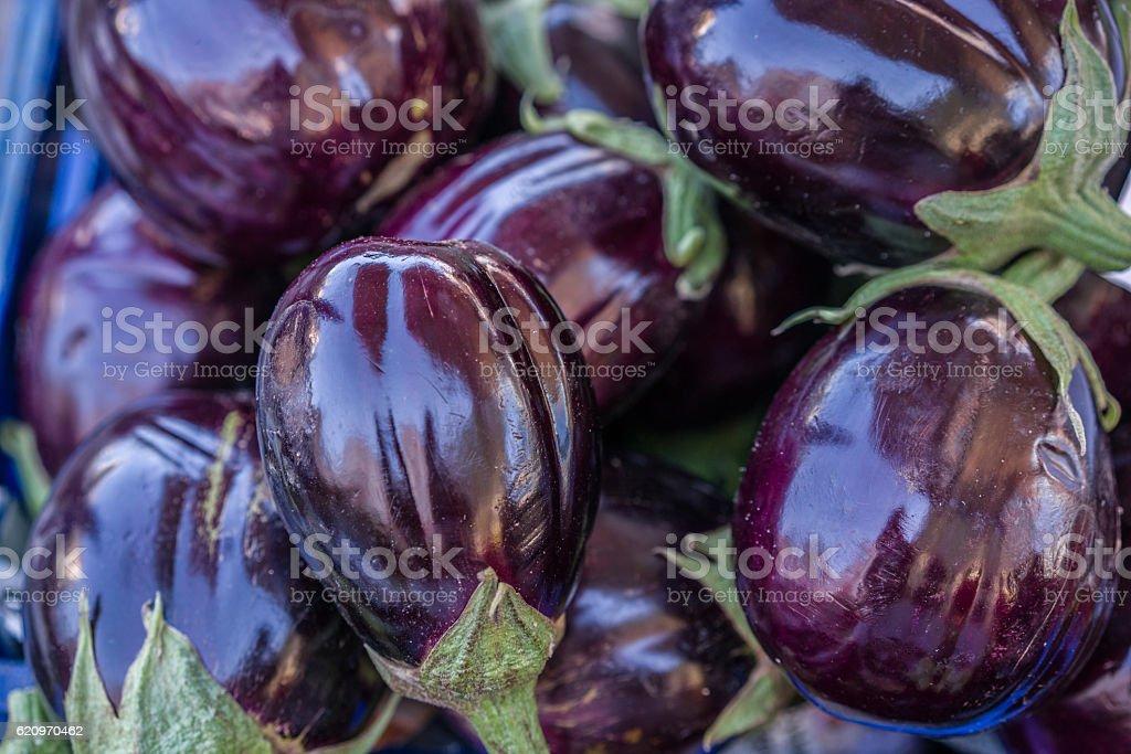 eggplant on the market stock photo