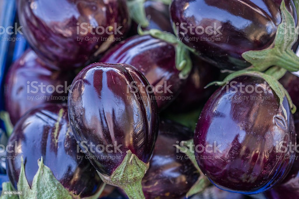 eggplant on the market stock photo