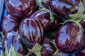 eggplant on the market