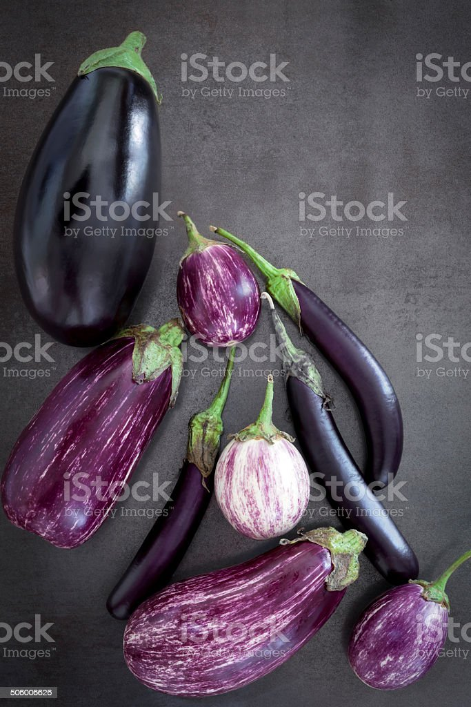 Eggplant Varieties on Slate Overhead View stock photo