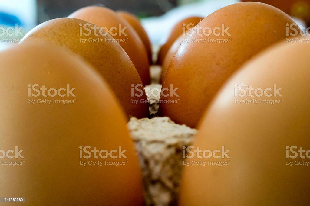 Eggs: Eggbox stock photo