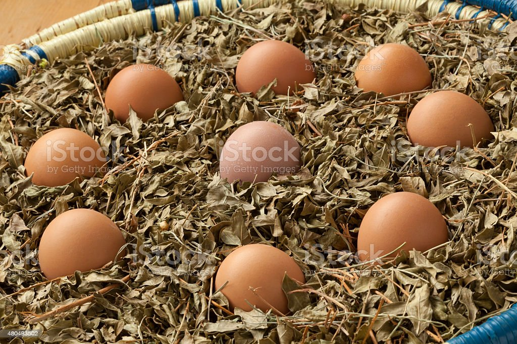 Eggs in a basket with dried henna leaves stock photo