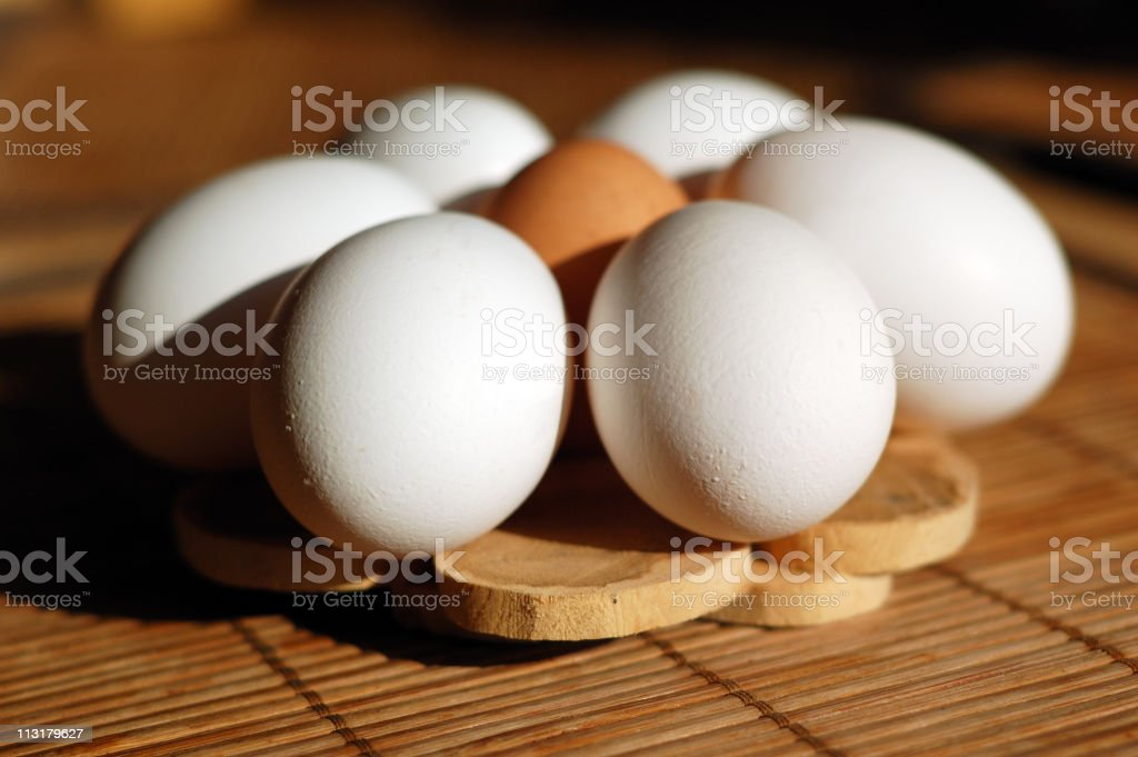 Eggs in a circle royalty-free stock photo