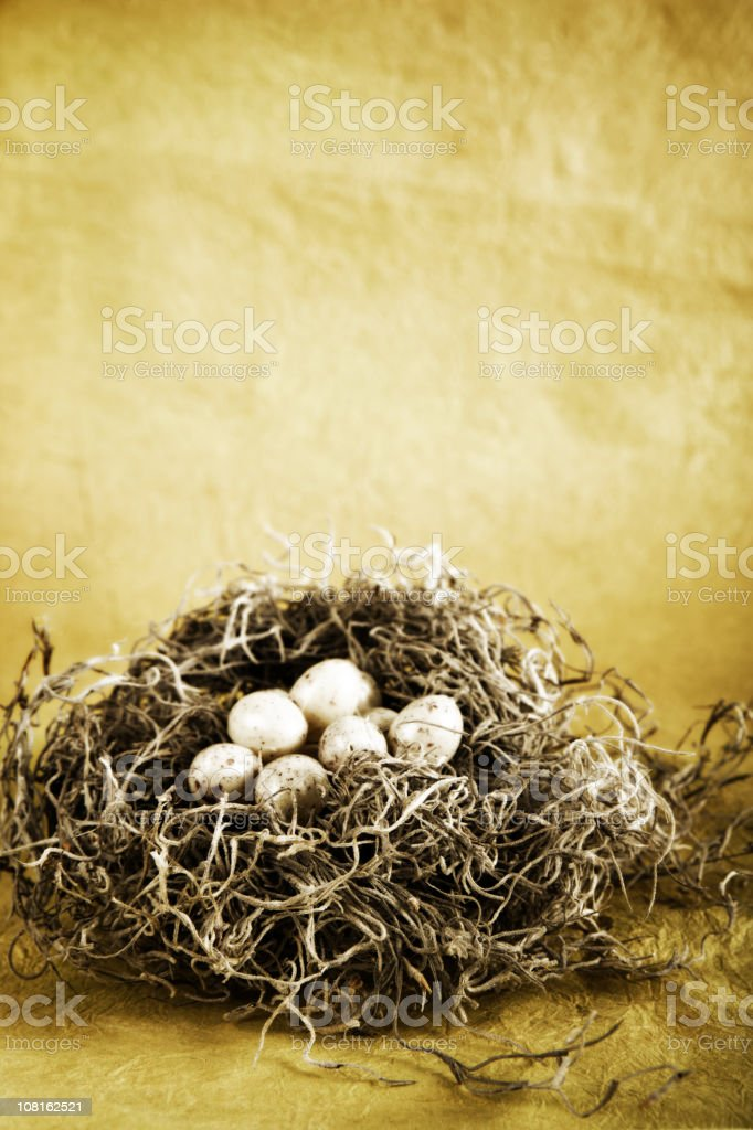 Eggs in a Nest royalty-free stock photo