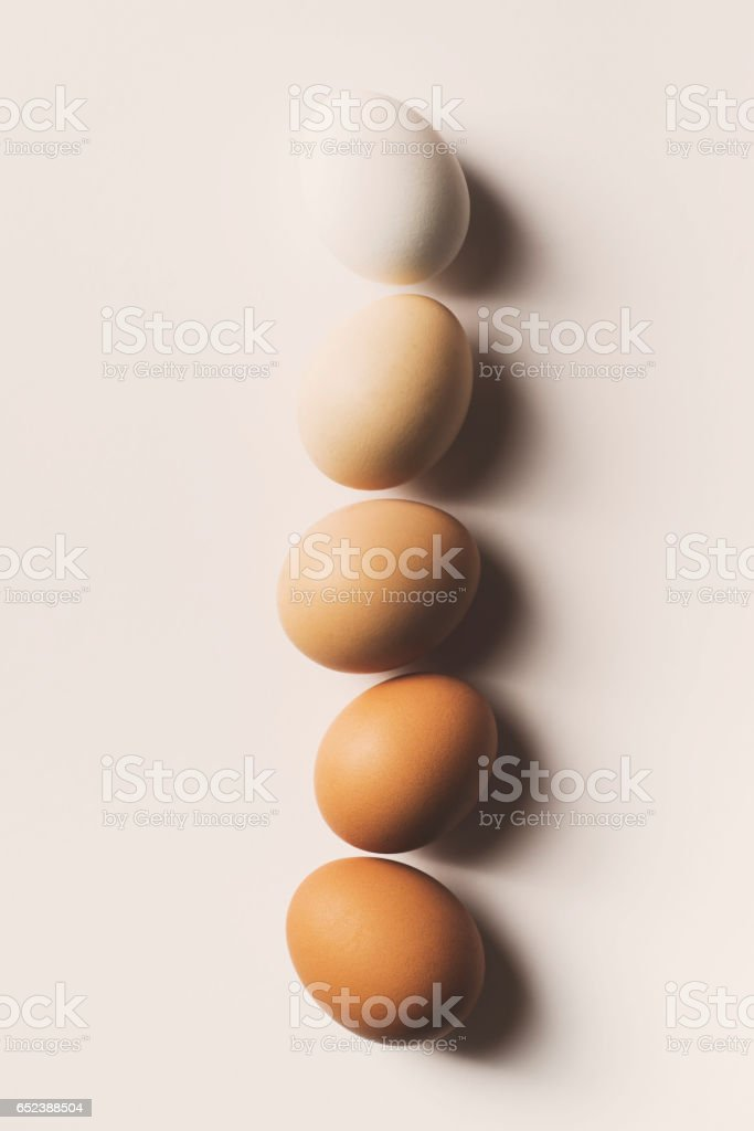 Eggs in a row stock photo