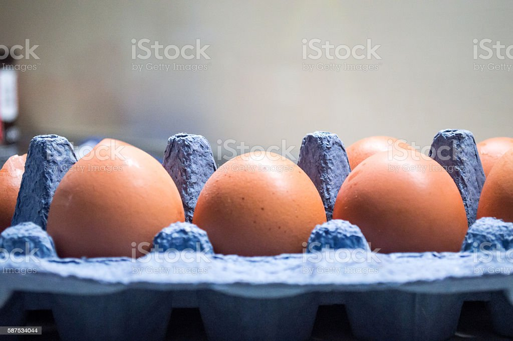 Eggs in an Egg Carton/Box Side View royalty-free stock photo