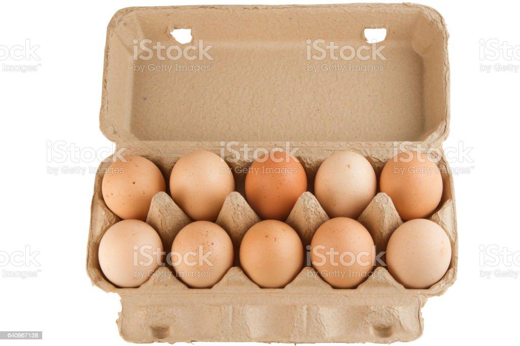 Eggs in carton box stock photo