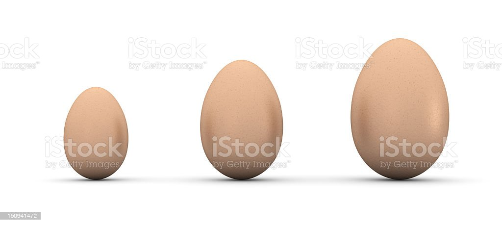 Eggs in line royalty-free stock photo