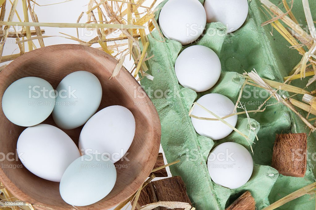 Eggs in nest on the nature, Fresh eggs for cooking stock photo