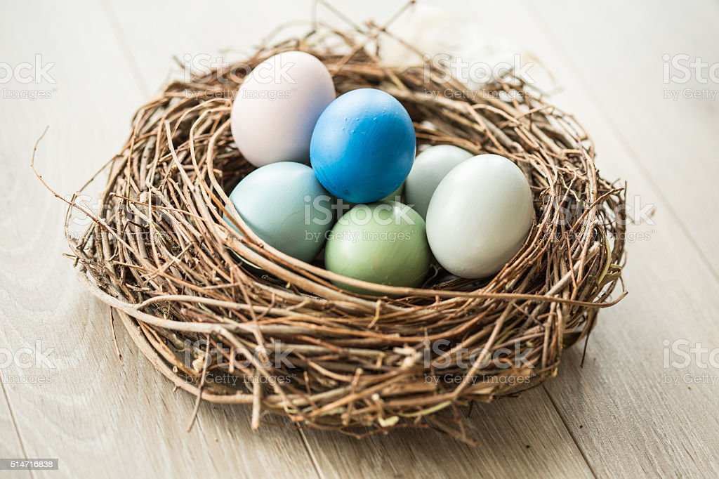 Eggs in nest stock photo