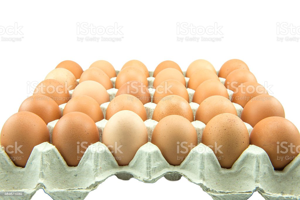 Eggs in paper tray isolated on white Background. stock photo