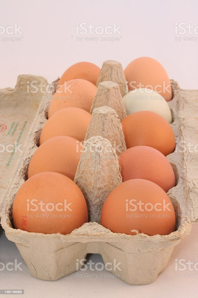 Eggs in row royalty-free stock photo