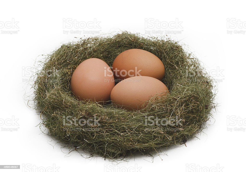 Eggs in the nest royalty-free stock photo